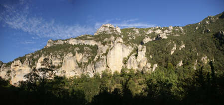 Limestone cliffs and forest  near the town of  Entraygues, France