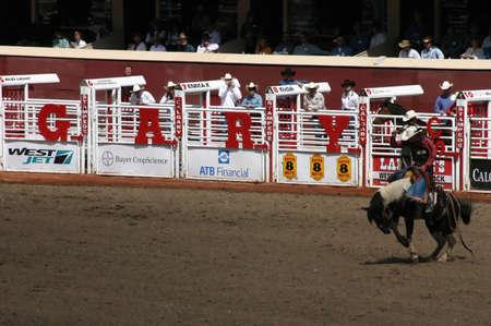 stampede: CALGARY CANADA JULY 2004 -  Cowboy riding bucking bronco, Calgary Stampede, Alberta, Canada Editorial