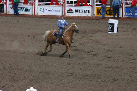 calgary stampede: CALGARY CANADA JULY 2004 -  Cowgirl barrel racing,  Calgary Stampede, Alberta, Canada