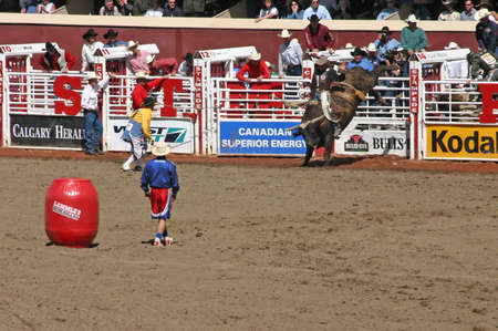 stampede: CALGARY CANADA JULY 2004 -  Cowboy trying to ride a wild bull, Calgary Stampede, Alberta, Canada