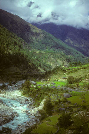 Terraced fields near Lukla,  Khumbu Himalaya, Nepal, Asia