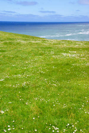 Rolling green meadows and Pacific Ocean,  near Otter Rocks,  Oregon Coast photo