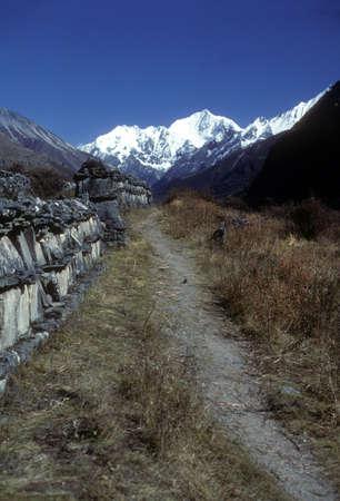 mani: Mani walls built along high Himalayan trail, Langtang Valley Langtang Himal, Himalayas,  Nepal, Asia Stock Photo