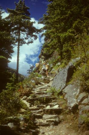 Porters on steep trail to Namche Bazar,  Khumbu Himalaya, Nepal, Asia  Stock Photo