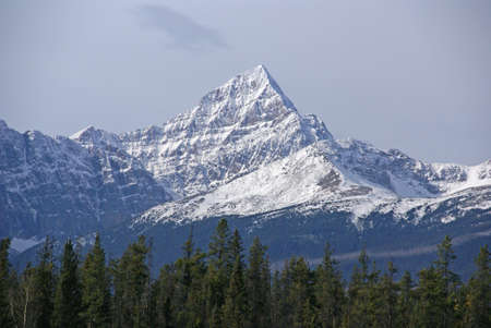 Mt Edith Cavell in the Canadian Rockies,   Columbia Icefield Parkway, Alberta, Canada