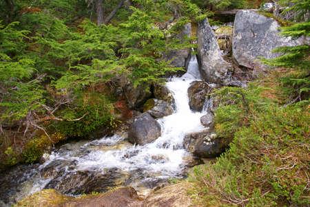 dewey: Flusso a cascata, Dewey Laghi trail, Skagway, Alaska
