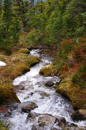 dewey: Cascading stream, Dewey Lakes trail, Skagway, Alaska  Stock Photo