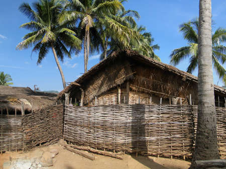 Thatched huts and palm trees in a tribal village in   Orissa, India Stock Photo - 11663397