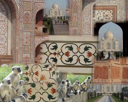 inlay: Montage -   Taj Mahal - monkeys & mosaics and inlay detail   india,asia,agra