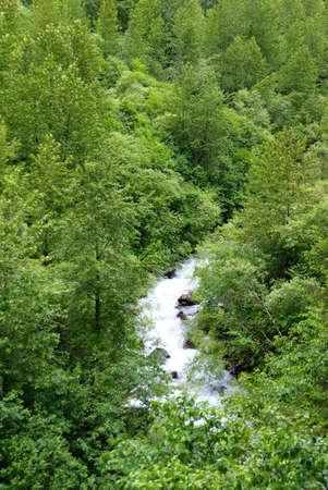 dewey: Foresta e ruscello di montagna, Dewey Laghi sentiero, Juneau, Alaska Archivio Fotografico