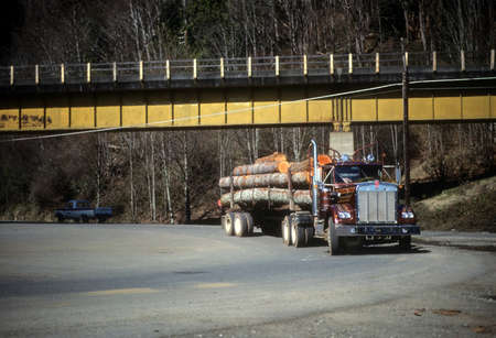 heavy industry: Logging truck delivering timber to sawmill,Shelton, WA, Pacific Northwest