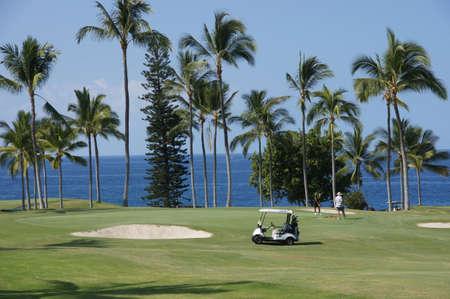 unidentified: KONA, HAWAII - 14 nov - jugadores no identificados jugar al golf mientras toma un descanso del fr�o continente en 14 de noviembre 2012 cerca de Kona, Hawaii. Editorial