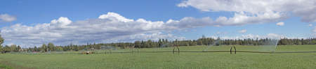propelled: Panorama, self propelled irrigation sprayers in field Central Oregon
