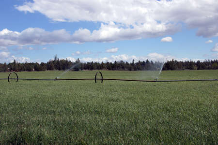 Self propelled irrigation sprayers in field Central Oregon Stok Fotoğraf - 22273973