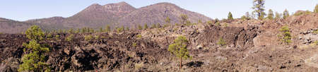 ponderosa: Panorama, Lava flow with Ponderosa pines, Sunset Crater National Monument, Arizona