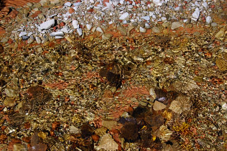 riverbed: Abstract  patterns