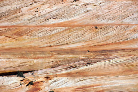 Detail, cross current layers of red sandstone, created from fossilized dunes and shifting winds over millions of years, Zion National Park, Utah