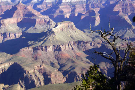 south rim: Early morning light on eroded ridges above the Colorado River, South Rim, Grand Canyon National Park, Arizona  Stock Photo