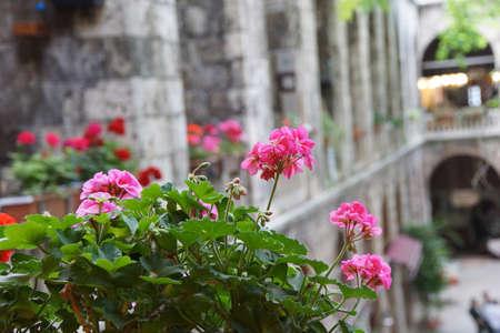 tea house: Colorful flowers line the balconies above the tea house  in the  Silk bazaar of  Bursa, Turkey   Stock Photo