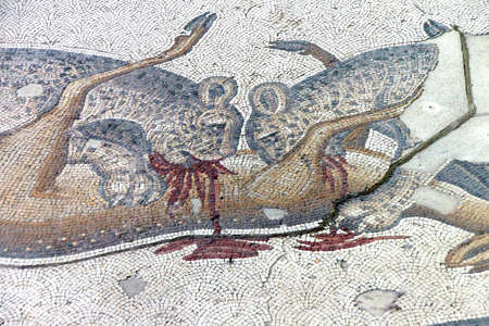 mosaic: Two leopards devouring their prey,  mosaic scene, Great Palace,  in Istanbul, Turkey   Editorial