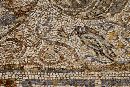 mosaic: Detail of geometric mosaic walk in front of small shops  from ancient Greek and Roman city of  Ephesus,  Turkey
