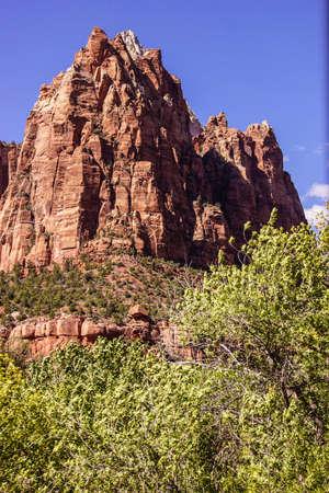 Jacob peak from the valley floor, Zion National Park, Utah