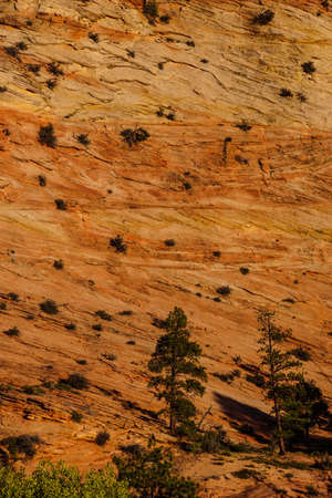 Patterns in the sandstone strata of hillsides in Zion National Park, Utah Stock fotó
