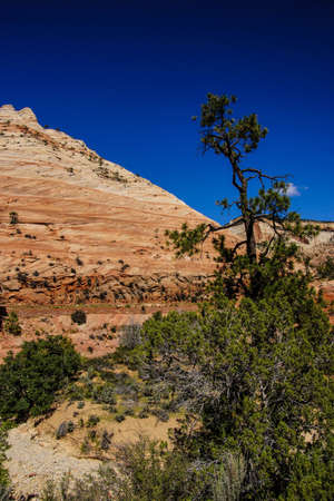 Patterns in the sandstone strata of hillsides in Zion National Park, Utah photo