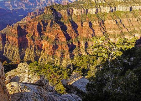 sedimentary: Early morning light on eroded ridges above the Colorado River, North Rim, Grand Canyon National Park, Arizona Stock Photo