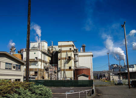 pulp: Pulp and paper mill, Cosmopolis, Washington 新聞圖片