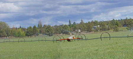 Panorama, self propelled irrigation sprayers in field Central Oregon Stok Fotoğraf