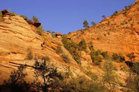 ridges: Layered sandstone mountains and ridges, Zion National Park, Utah