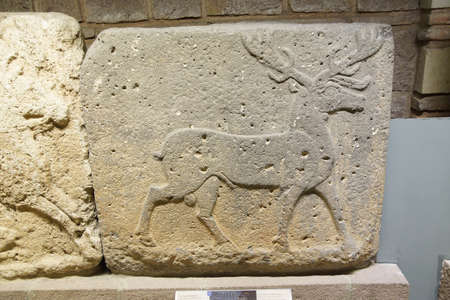 ANKARA, TURKEY - MAY 21, 2014 -  Stag sculpture,  from Kargamis, Gaziantep, 700 BCE Museum of Anatolian Civilization, Ankara, Turkey