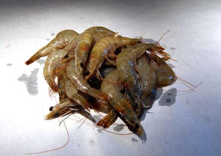 arthropod: Fresh whole shrimp, isolated, ready to cook, Seattle