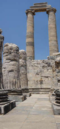 massive: Massive stone columns of the Apollo temple  at Didyma,  Turkey Stock Photo
