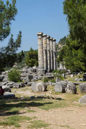 ionic: Ionic columns of the Temple of Athena Polias in ancient Priene,  Turkey