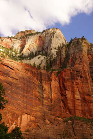 steep cliffs: Steep cliffs along the Virgin River  canyon, Zion National Park, Utah
