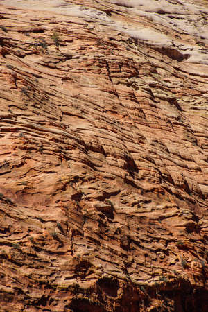 cliff face: Steep mountain cliff  face and ridges of Zion National Park, Utah