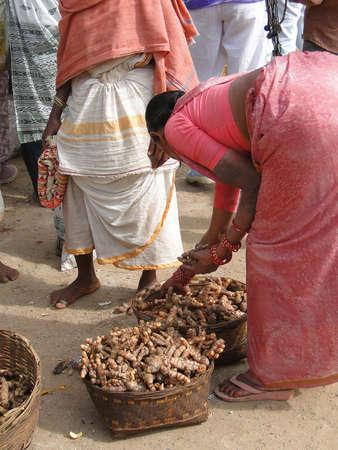 インド ・ オリッサにおける Chatikona 毎週の市場の販売のためのウコン根 写真素材 - 35159386