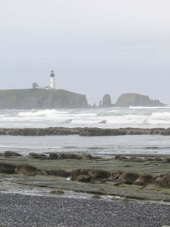 Seaweed and kelp on beach rocks at low tide, with lighthouse in foggy  background,  Oregon coast Stock Photo