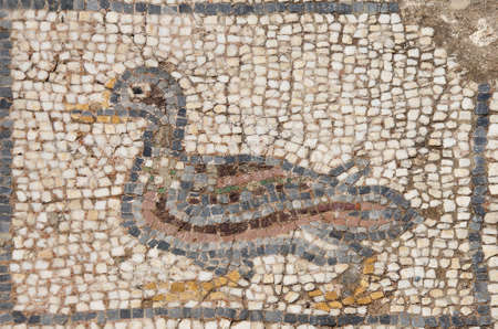 Duck mosaic    from ancient Greek and Roman city of  Ephesus,  Turkey Reklamní fotografie