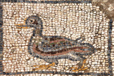 Duck mosaic    from ancient Greek and Roman city of  Ephesus,  Turkey Stock Photo - 35888180