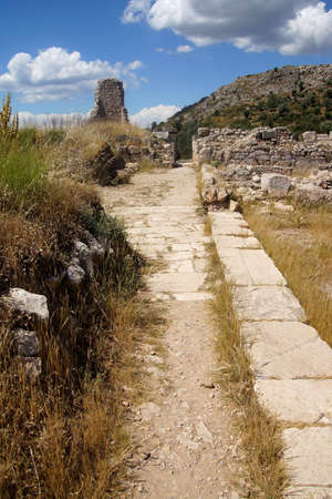 empedrado: Parcialmente restaurada calle pavimentada cerca del �gora de Janto (Xantos), Turqu�a Foto de archivo