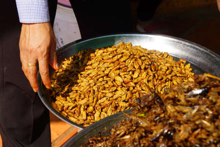 Deep fried insects, a traditional snack, Skoun,  Cambodia Stock fotó
