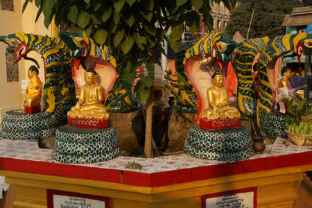serpents: Buddha protected by the naga cobra serpents hood,  Botataung Pagoda, Yangon,  Myanmar (Burma)