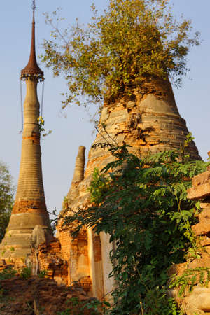 stupas: Vegetation reclaims ancient  Buddhist stupas at In Dein on  Inle Lake,  Myanmar (Burma)