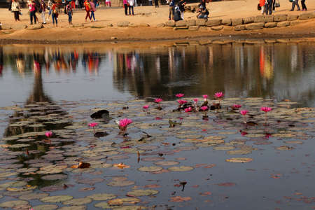 Lotus pond reflects progression of tourists visiting  Angkor Wat,  Cambodia Stock fotó - 40097838