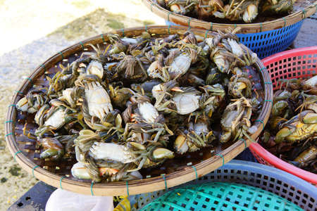marine crustaceans: Crabs on display in the central market of  Hoi An, Vietnam