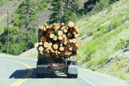 logging truck: Logging truck on mountain highway,   British Columbia, Canada