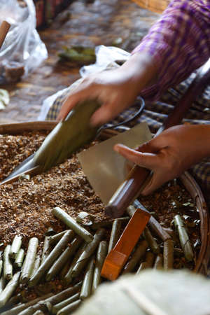 cheroot: Rolling cheroot cigars,  Inle Lake,  Myanmar (Burma) Stock Photo